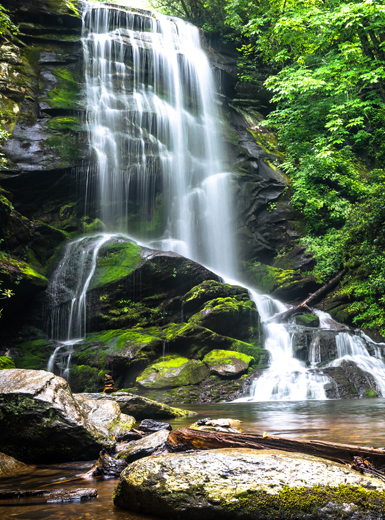Glasrückwand Wasserfall im Wald